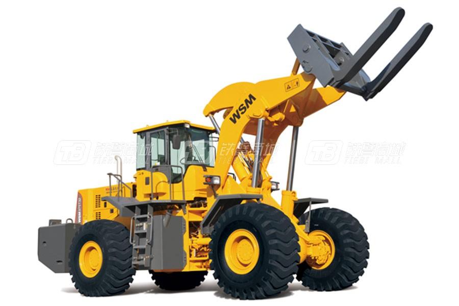 威盛WSM975T32大吨位叉装车