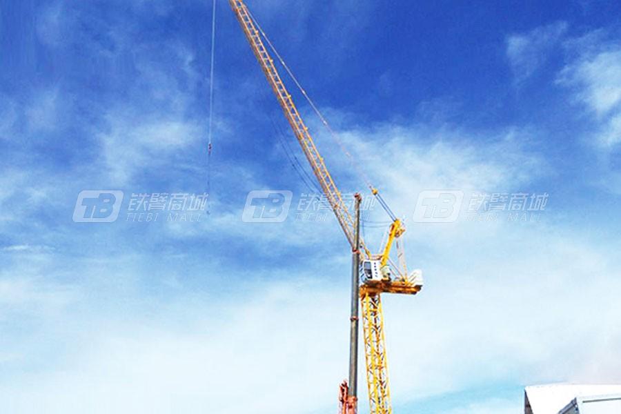 山东大汉CTL 260 (5531)动臂式塔式起重机图片