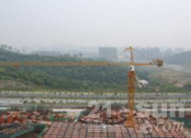 四川强力Q6015塔式起重机图片
