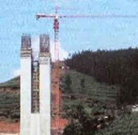 重庆中建QTZ100(6015)塔式起重机
