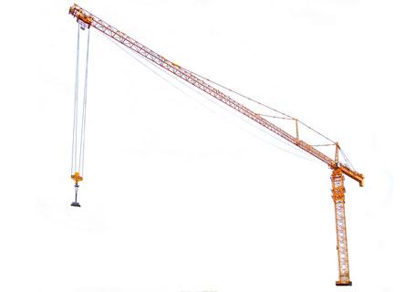 中联重科d2500-120超大型塔式起重机图片图片